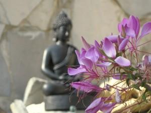 buddha w flowers
